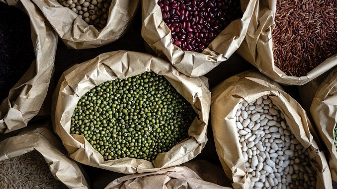 Gut health, Parkinson's and eating legumes