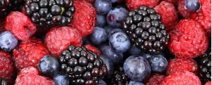 parkinsons keto berries