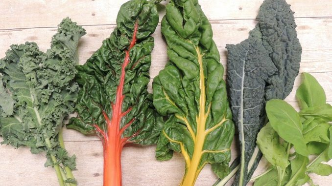 10 foods to eat if you have Parkinson's, brain healthy foods e.g. green leafy vegetables
